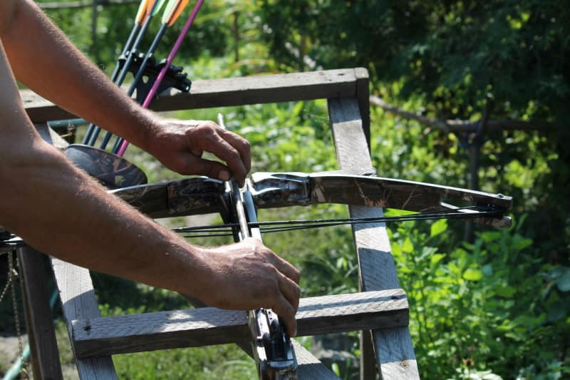 Why Do Bowhunters Hate Crossbows