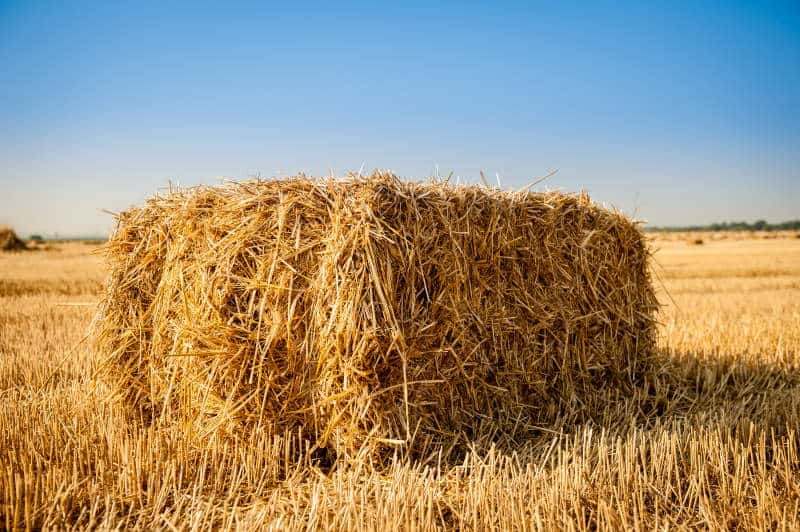 can you use hay bales as archery targets